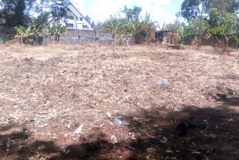 garden estate plot- tysons limited