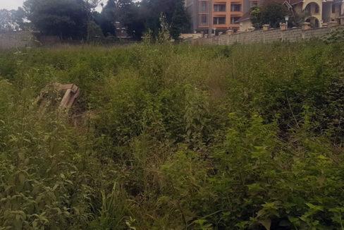 garden-estate-plot-tysons-limited-2