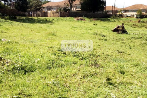 elgon_view_plot_tysons_limited