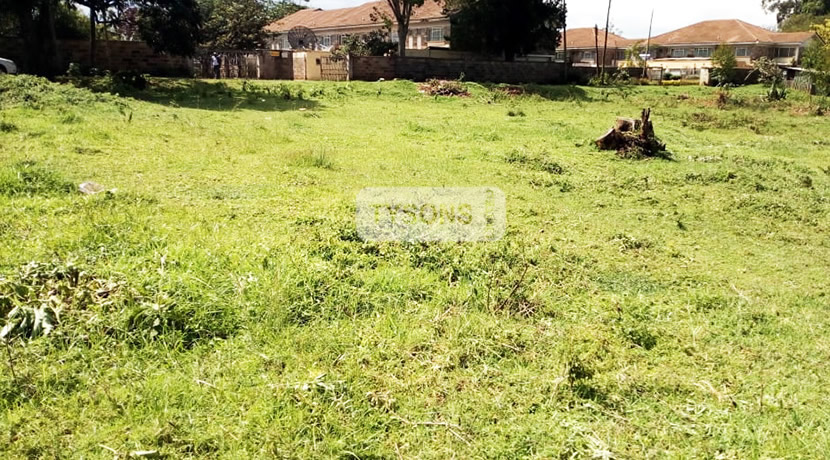 elgon_view_plot_tysons_limited_1