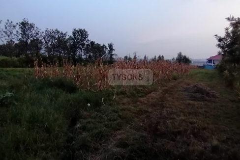 kogony_plot_tysons_limited
