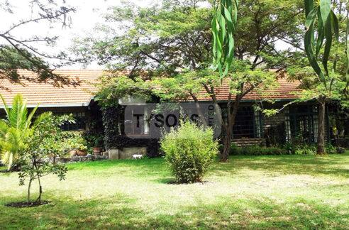 thorn-tree-house-kiserian-house-for-sale-tysons-limited