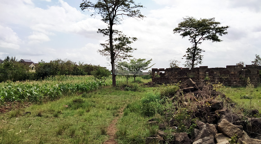 land-for-sale-in-ruiru-tysons-limited-3
