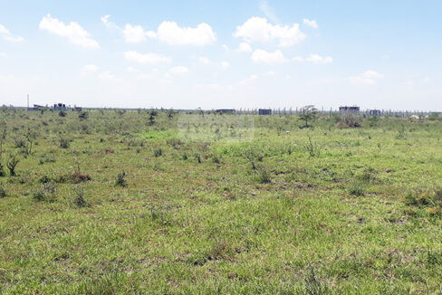 plot-for-sale-in-katani-tysons-limited