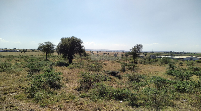 land-for-sale-in-isinya-enkavilla-tysons-limited-2