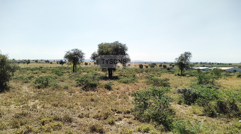 land-for-sale-in-isinya-enkavilla-tysons-limited-5