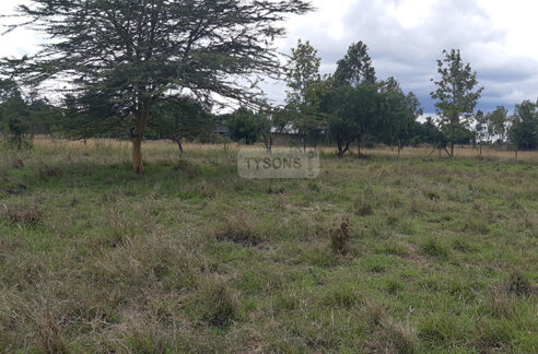 land-for-sale-in-acacia-kitengela-tysons-limited