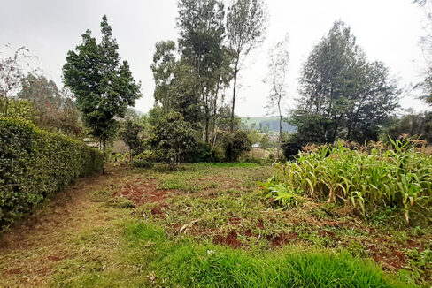 land-for-sale-in-limuru-tysons-limited