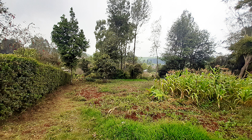 land-for-sale-in-limuru-tysons-limited-1