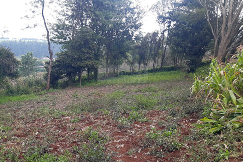 land-for-sale-in-limuru-tysons-limited-2