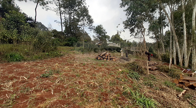 land-for-sale-in-limuru-tysons-limited-3