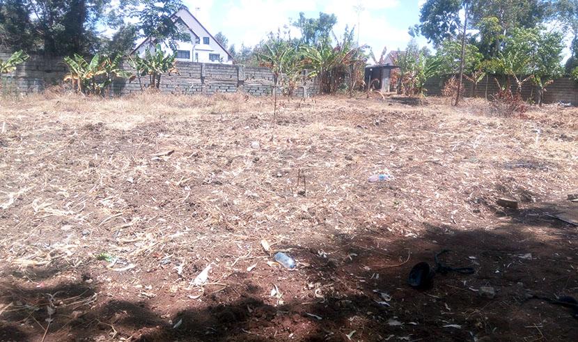 Garden Estate Plot