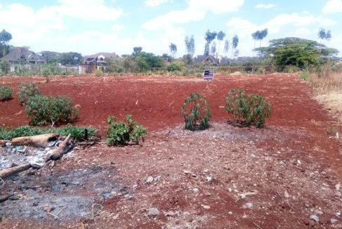 riverview plot tysons limited 1.1