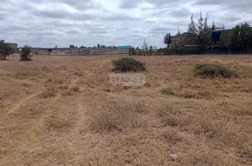 acacia-kitengela-tysons-limited