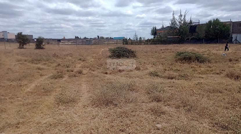 acacia-kitengela-tysons-limited-1