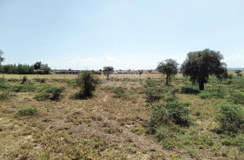 land-for-sale-in-isinya-enkavilla-tysons-limited