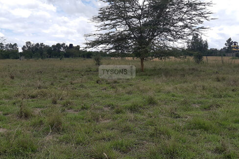land-for-sale-in-acacia-kitengela-tysons-limited-3